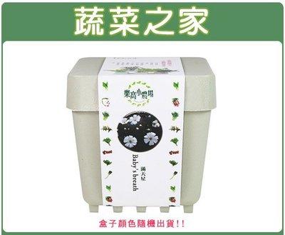 全館滿799免運【蔬菜之家004-D0...