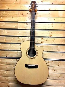【金聲樂器】Randon RG-64C 雲杉面單 黑柿側背板 附厚琴袋 民謠 吉他 RG64C