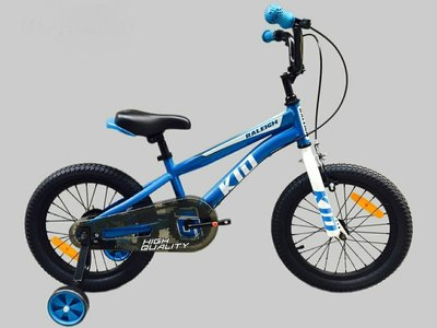 【IRLAND】英國萊禮 RALEIGH 16吋單速 輔助輪 童車 共3色(藍色)