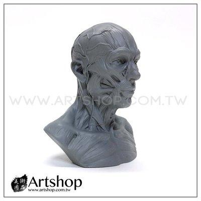 【Artshop美術用品】藝用人體解剖模型 1:3 肌肉半胸像 (灰色)