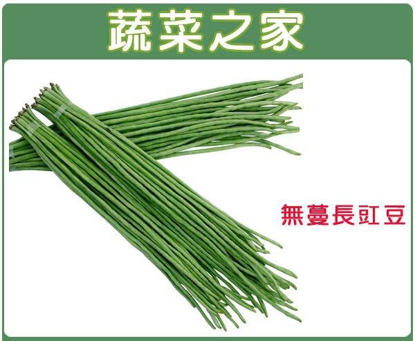 【蔬菜之家】E10.無蔓長豇豆種子50顆(株矮,淺綠色豆莢,莢長約45公分.蔬菜種子)
