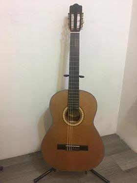 【金聲樂器】Woodtone C240