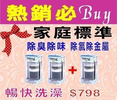 【七星淨水】除氯沐浴器標準Y2型買二送...
