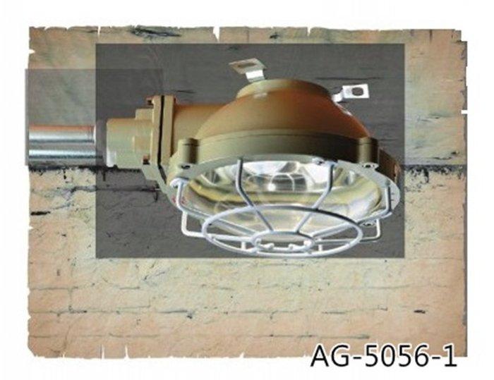 【昶玖照明LED】工業風Loft 吊燈 LED 居家客廳書房 餐廳吧檯 復古北歐 設計師款 金屬 AG-5056-1