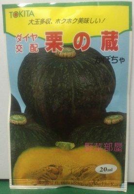 【野菜部屋~限量種子】北海道栗之藏南瓜種子原包裝 , 栗子南瓜 , 每包350元 , 早生品種 ~