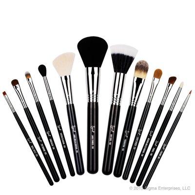 【愛來客】☆美國Sigma官方授權經銷商☆ESSENTIAL KIT 12支化妝刷組