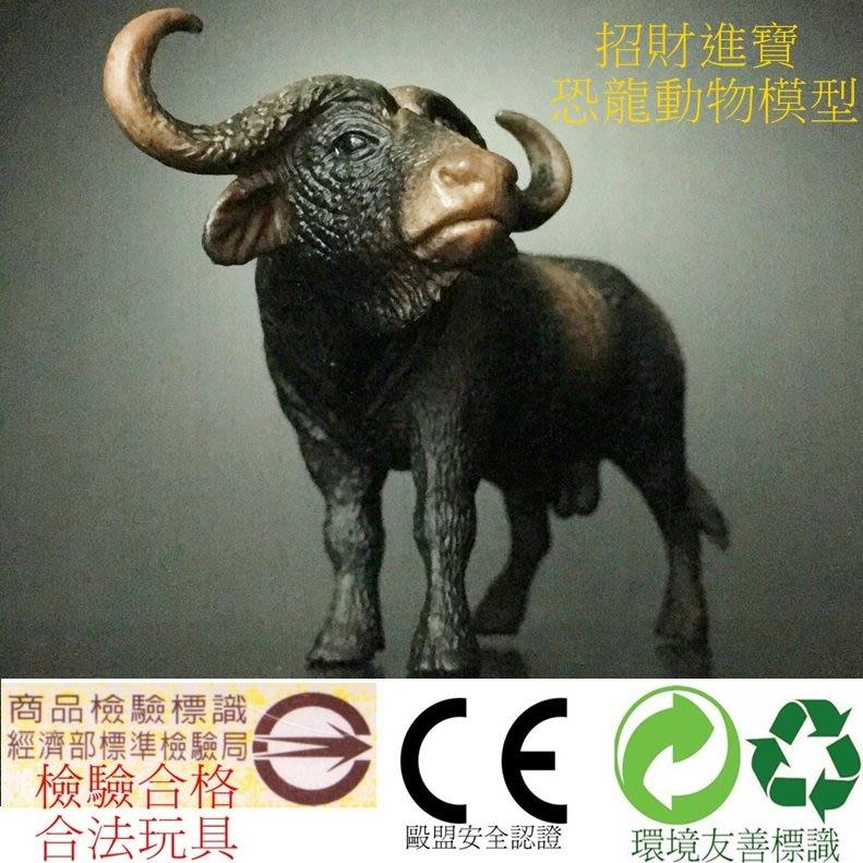 非洲水牛(公) 仿真動物模型玩具 野生動物園 ZOO 公仔 兒童禮物教育另有售斑馬鱷魚企鵝熊貓河馬獅子大象恐龍AM12