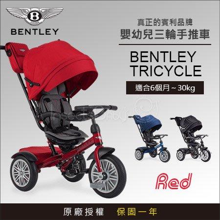 ✿蟲寶寶✿【英國Bentley】原廠授權 Bentley 賓利 時尚超豪華 6合1嬰幼兒手推車/學步車/三輪車 紅色