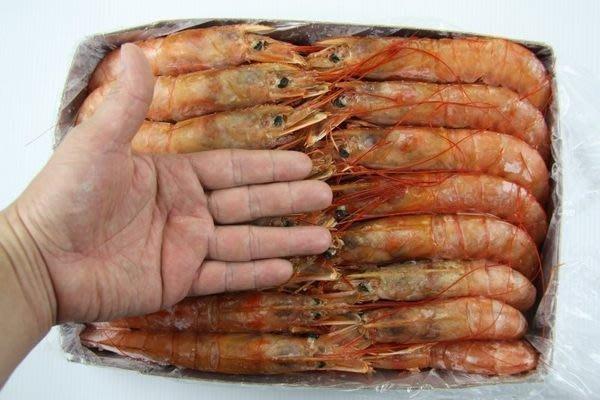【萬象極品】《特價》天使紅蝦 / 2kg(L1 10/20最大尾等級)~來自南美洲阿根廷海域~生食等級~