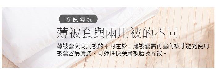 【OLIVIA 】可水洗式薄被胎/標準雙人6X7尺/現品/夏天搭配薄被套專用/貼身舒適/台灣製