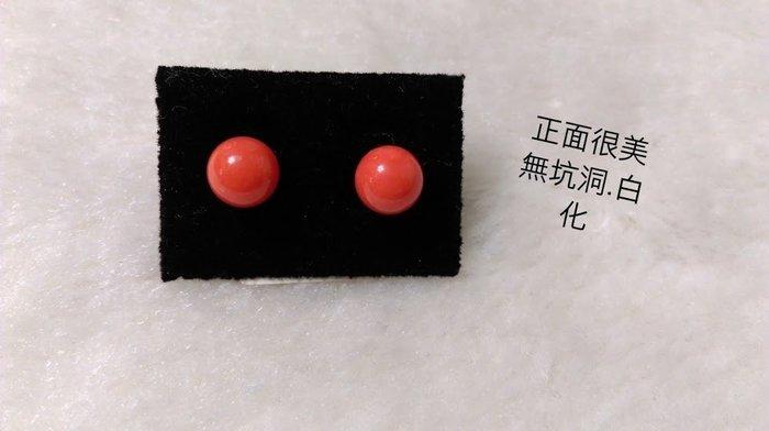 ~~『臻愛.珊瑚玉石小鋪』~~高級時尚阿卡紅珊瑚耳環(純黃k耳針)~~7mm~網路價