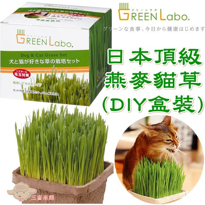 【三吉米熊】日本GreenLabo頂級寵物用DIY燕麥草/貓草零食/狗狗貓貓都適合吃(盒裝)~160元