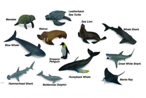 素食天堂~COLLECTA動物模型R1107盒裝迷你海洋動物-1 12支裝