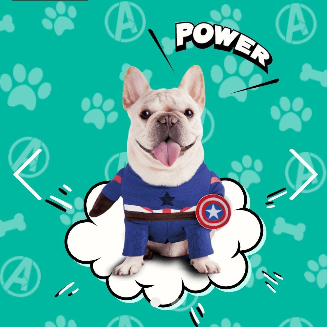 現貨免等 全家集點 超集英雄 萌寵戰力衣 美國隊長 寵物衣服 COSPLAY 漫威正版授權