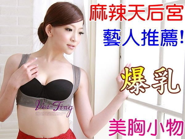 [A33]《Vei-Ting》機能型防駝背心束衣托胸帶【托高集中副乳防外擴防下垂】透氣美胸爆乳款