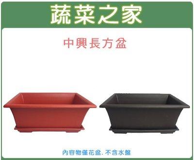 全館滿799免運【蔬菜之家005-D9...