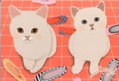 (可超取)HappyLife【SV4732】Jetoy,choo choo甜蜜貓情侶系列明信片-F 可愛貓咪 鞋子 禮卡