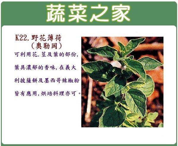【蔬菜之家】K22.野花薄荷(奧勒岡)種子200顆(可利用花.莖及葉的部份,葉具濃郁的香味.香草種子)