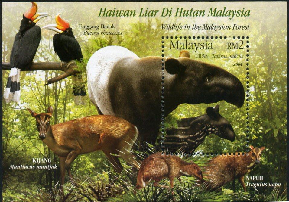 2004馬來西亞保護森林動物(馬來貘)