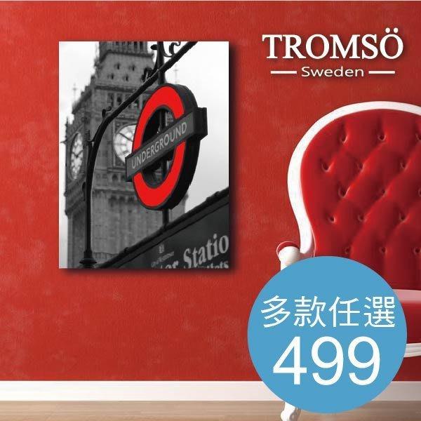 TROMSO~ 無框畫~499元款 裝飾畫 油畫 壁紙 壁貼 相框 時鐘 IKEA~大樹小