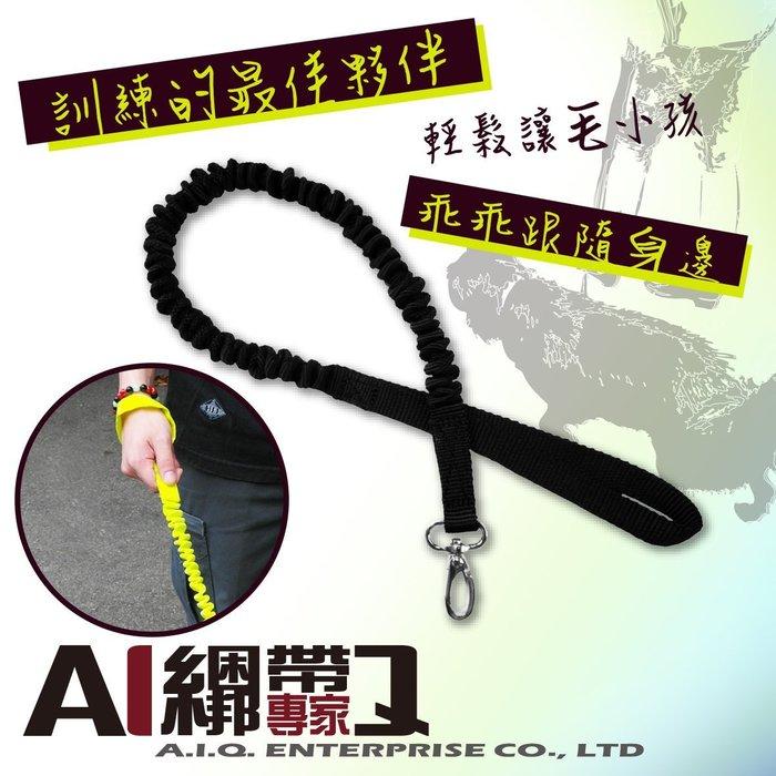 A.I.Q.綑綁帶專家- LT2312 彈性伸縮狗牽繩  黑色 10mm x 50~100cm (小型犬專用)