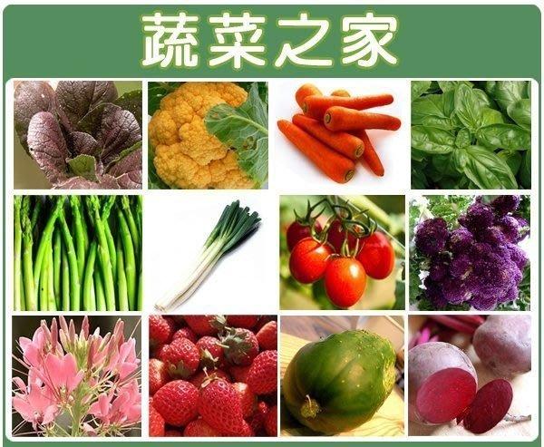 【蔬菜之家】蔬菜花草種子總匯400種以上(全面每包12元.滿額免運費.買滿再加贈)