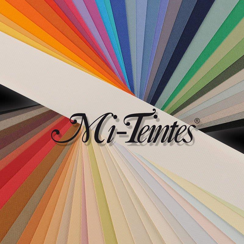 H&G美術廣場 法國canson粉彩紙 mi teintes適粉彩、色鉛筆、碳經筆、鉛筆、沾水筆!  55*75cm