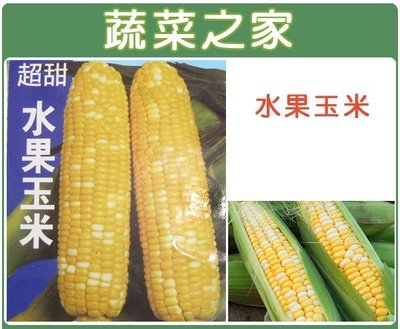 全館滿799免運【蔬菜之家00G08】...