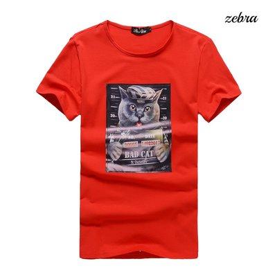 ZEBRA-【TS36022】 韓版 ...