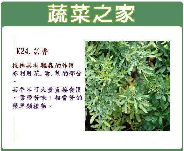 【蔬菜之家】K24.芸香種子50顆(植株具有驅蟲的作用.香草種子)