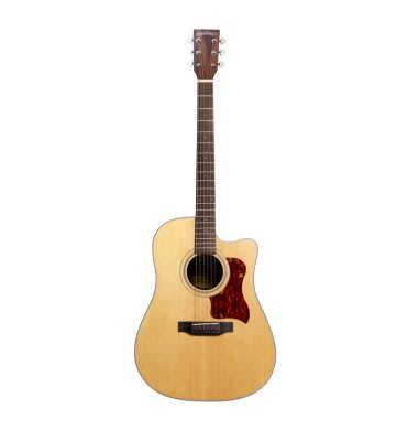 【金聲樂器】Woodtone - D10C (附原廠琴袋)