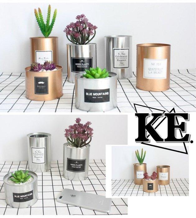 北歐簡約 金屬 鐵罐 鐵皮罐 擺設 拍攝道具 多肉花盆 盆栽 造景 筆筒 多功能收納盒 拍照道具