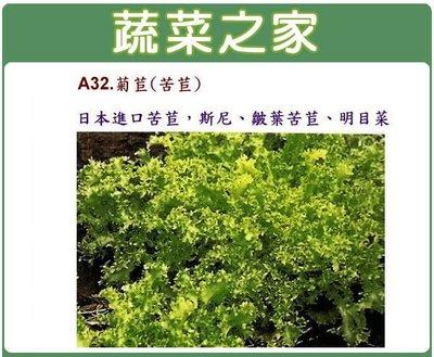【蔬菜之家】A32.菊苣(苦苣)種子1...