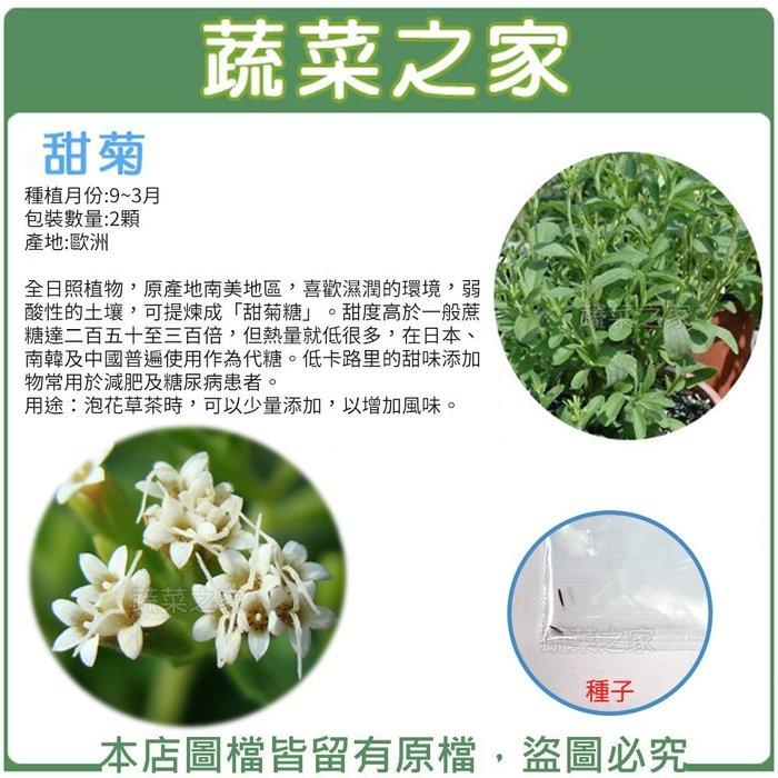 【蔬菜之家】K18.甜菊種子2顆(全株具有甜味.葉片最甜.添加在茶飲中.增加甜味.香草種子)