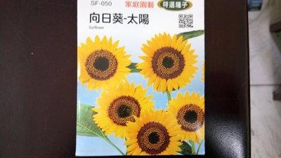 299免運 向日葵種子 花 種子 花海種子