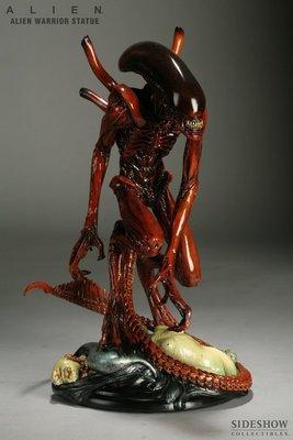 Sideshow Alien Warrior 紅棕色戰鬥異形 全身雕像 竹谷隆之設計