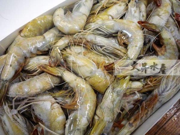 【大昇水產】紅海的奇績/活體急凍/各大飯店指定愛用_藍鑽蝦1kg/盒