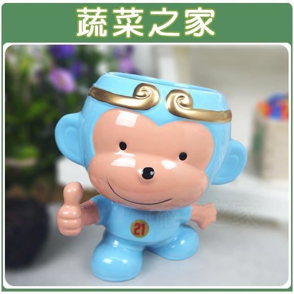 全館滿799免運【蔬菜之家004-G18BL】猴賽雷陶瓷造型花盆-藍色※此商品運費適用宅配貨運※