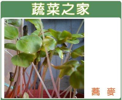 全館滿799免運【蔬菜之家00J06】...