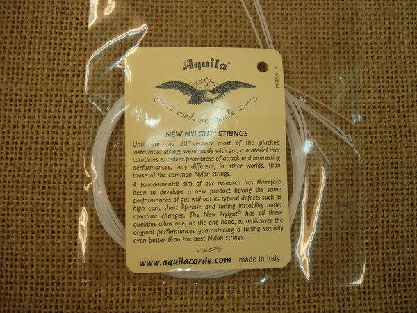 【六絃樂器】全新義大利 Aquila 烏克麗麗弦 / 21吋23吋通用 現貨特價