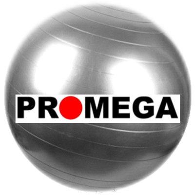 [福威国际企业] 65公分 大龙球 韵律球 健身球 瑜珈球 抗力球 4色可选