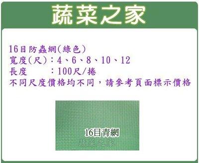 全館滿799免運【蔬菜之家012-B0...
