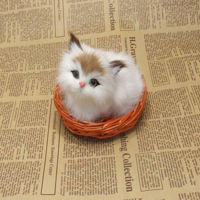 招財貓-貓來就招財