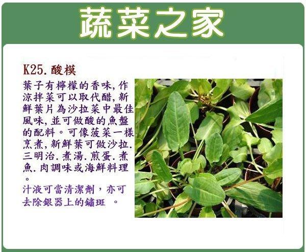 【蔬菜之家】K25.酸模種子300顆(葉子有檸檬的香味,作涼拌菜可以取代醋.香草種子)