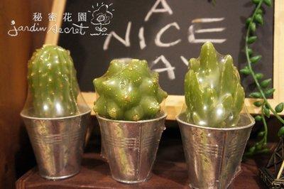仙人掌蠟燭--秘密花園--仙人掌造型蠟燭2入一組/盆栽/婚禮擺飾/佈置/禮品
