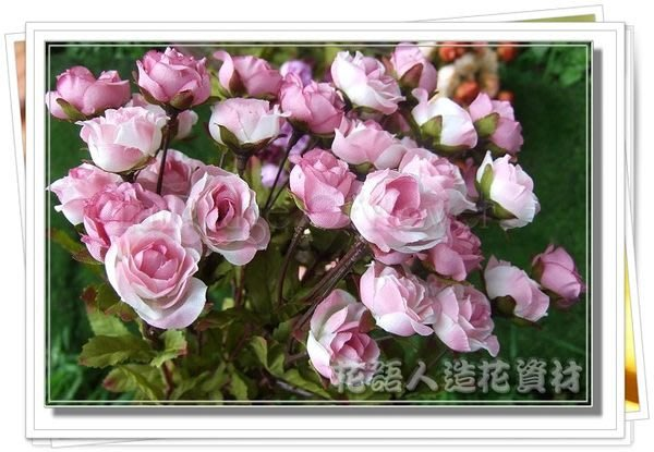 ◎花語人造花資材◎*36頭秋香玫瑰花束*4色~花藝盆景~婚紗攝影~櫥窗~造景