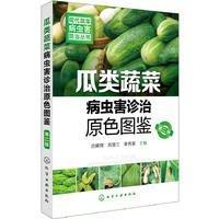 99【園藝 盆景】現代蔬菜病蟲害防治叢...