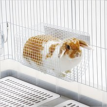 ~WANG~ Marukan 小動物網狀涼墊、跳台、跳板 MR~638  兔˙天竺鼠˙龍貓