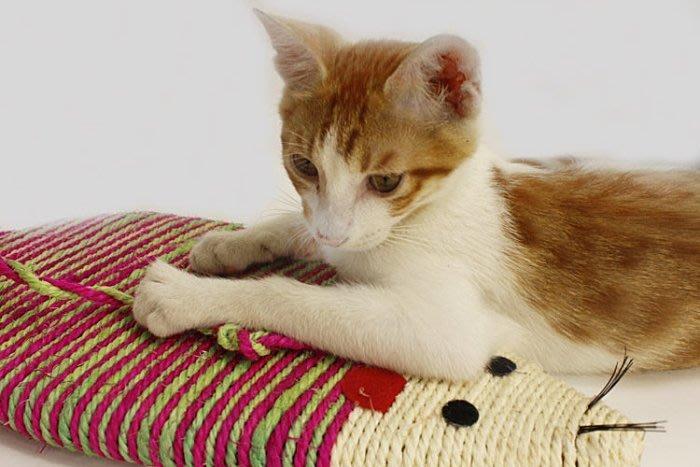 吉米 館 編織麻繩彩色老鼠貓抓板 大號  老鼠型磨爪板 可掛式劍麻貓抓板 劍麻鼠大號 磨爪