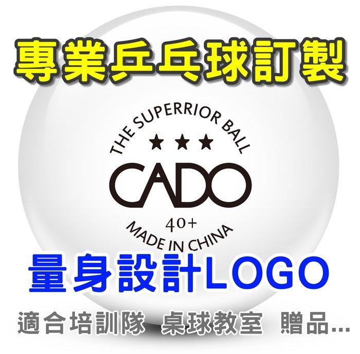 新塑料ABS材料,訂製LOGO,訂製乒乓球,桌球教室,培訓隊,訂製二星訓練用球